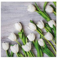 Pl Serwetki White Tulips 139835